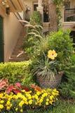 Entrada à casa com flores amarelas fotos de stock royalty free
