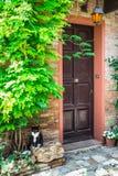 Entrada à casa italiana velha e ao gato Fotos de Stock Royalty Free