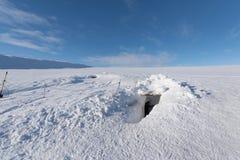 Entrada à caverna de gelo Imagem de Stock