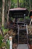 Entrada à floresta Imagem de Stock Royalty Free