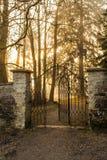 Entrada al bosque Sun Imágenes de archivo libres de regalías