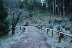 Entrada al parque nacional Imagen de archivo libre de regalías