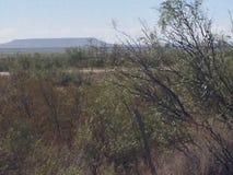 Entrada al sudoeste Tejas Imagen de archivo