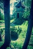 Entrada celta em Havranok - Eslováquia foto de stock royalty free