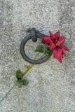 Entrada concreta a la tumba Foto de archivo libre de regalías