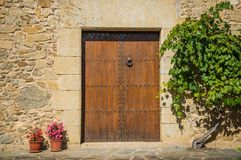 Entrada de madeira da porta Foto de Stock