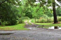 Entrada de automóveis enlameada rural de Texas com rotinas do pneu e porta de balanço foto de stock royalty free