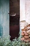 Entrada de la casa vieja del abandone Fotografía de archivo libre de regalías