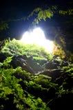 Entrada de la cueva Fotos de archivo libres de regalías