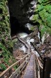 Entrada de la cueva de hielo Fotos de archivo libres de regalías