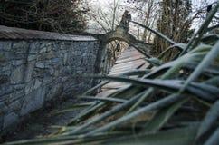 Entrada de un cementerio con una puerta abierta del labrado-hierro Imagen de archivo libre de regalías