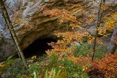 Entrada de una cueva Foto de archivo libre de regalías