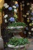 Entrada decorada com mola branca azul das flores Imagens de Stock