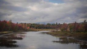 Entrada del follaje de otoño imagen de archivo libre de regalías