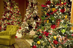 Entrada do hotel de luxo das luzes das árvores de Natal Fotos de Stock Royalty Free