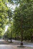 Entrada do parque da perspectiva Imagem de Stock