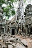 Entrada do templo, Angkor Wat, Cambodia Imagens de Stock