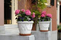 Entrada elegante de la casa que enmarca de los crisoles de flor Foto de archivo libre de regalías