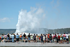 Entrada em erupção fiel velha Fotografia de Stock