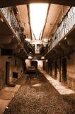 Entrada européia velha da casa - sepia Imagem de Stock Royalty Free