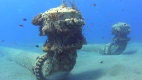 Entrada industrial subacuática de la tubería con los bajíos de pescados almacen de video