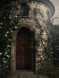 Entrada a la torre Fotografía de archivo libre de regalías