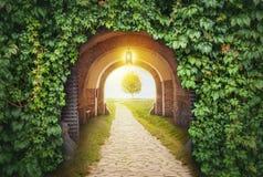 Entrada misteriosa da porta no paraíso Fotografia de Stock