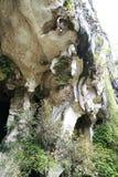 Entrada natural bonita da caverna da pedra calcária em Malásia Monte e caverna da pedra calcária Monte arredondado coberto e dram imagem de stock