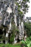 Entrada natural bonita da caverna da pedra calcária em Malásia Monte e caverna da pedra calcária Monte arredondado coberto e dram foto de stock