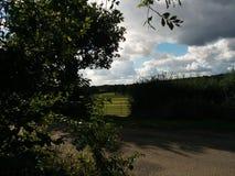 Entrada para cavalos Foto de Stock Royalty Free