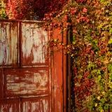 Entrada roja rodeada con follaje del otoño Imagen de archivo