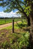 Entrada só da estrada de exploração agrícola no sol dappled Imagem de Stock