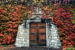 Entrance. Old house entrance covered with leafs Royalty Free Stock Image