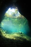 Entrance area of cenote underwater cave Stock Photos