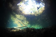 Entrance area of cenote underwater cave Stock Image