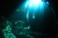 Entrance area of cenote underwater cave Royalty Free Stock Photography