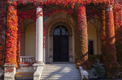 Entrance at old building Royalty Free Stock Photography