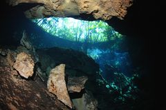 Entrance cenote cave Royalty Free Stock Photography