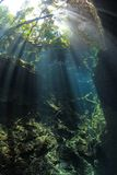Entrance cenote cave Stock Photo