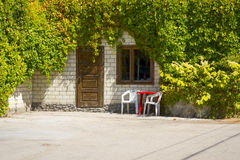Entrance door in house overgrown with vine Royalty Free Stock Photography
