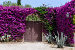 Entrance door of a rural house on Puglia Royalty Free Stock Photos