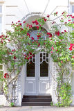 Entrance door townhouse red roses. Entrance door of an old townhouse with two rose bushes and red flowers, copyspace, Hamburg Stock Photography