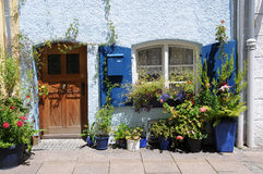 Entrance with flowerpots Stock Image