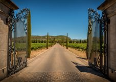Entrance gate, driveway, vineyards, cypresses and hills Royalty Free Stock Images