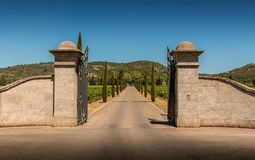 Entrance gate, driveway, vineyards, cypresses and hills Royalty Free Stock Image