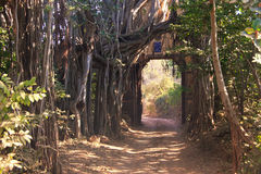 Entrance gate to Ranthambore National Park, India. Entrance gate to Ranthambore National Park, Rajasthan, India stock images
