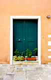 Entrance green door of old building house Royalty Free Stock Photos