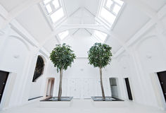 Entrance hall Royalty Free Stock Photo