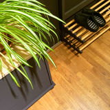Entrance hall with plant and slippers on shoe rack Stock Images