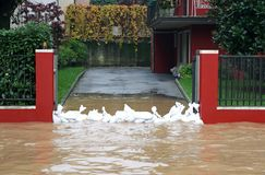 Entrance of the House with a bunch of sandbags in defense during Stock Photos
